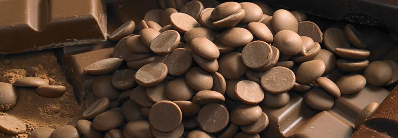 Заменители какао масла